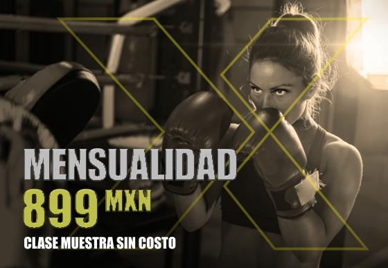 Membresia mensual para clases de box en cancun