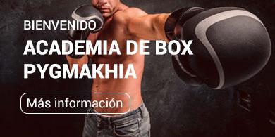 bienvenido-academia-de-box