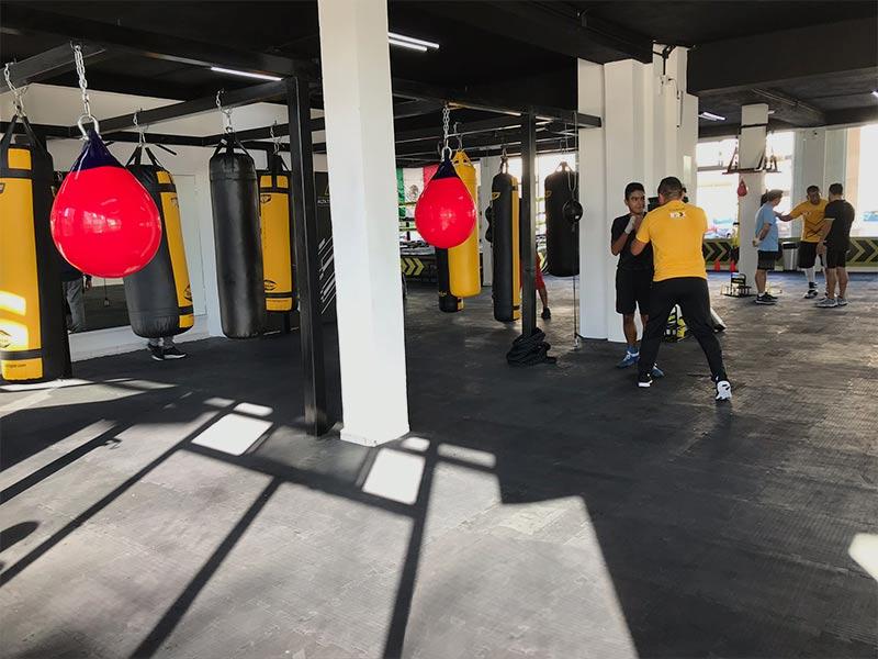 Instalaciones-academia-de-box-en-cancun