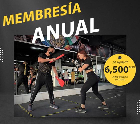 Membresía anual para clases de box en cancun